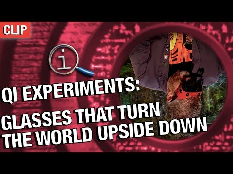 QI Experiments  Glasses That Turn The World Upside Down