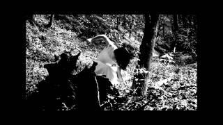 Trailer for Hotblood