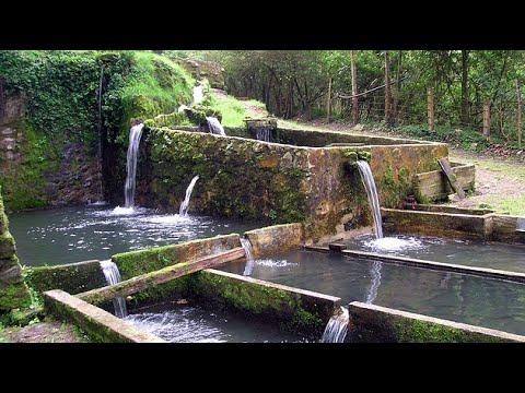 Recorrido Ecológico por San Antonio del Tequendama - TvAgro por Juan Gonzalo Angel