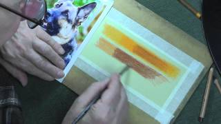 Layering Colours For A German Shepherd Eyes