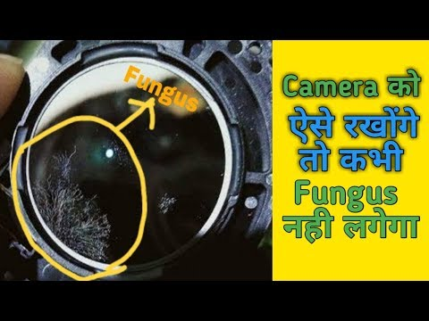 How To Remove Fungus From Camera Lens Easy In Hindi   Camera Fungus Cleaning
