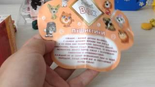 Пушистики Sweet box распаковка коробочки №1 собачка