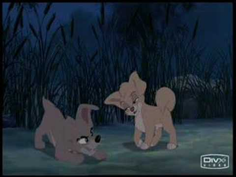 Lady and the Tramp I & II Music Video - Bella Notte