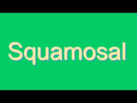 How to Pronounce Squamosal