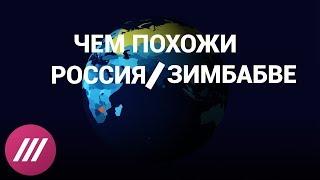 Россия и Зимбабве: найдите 5 отличий