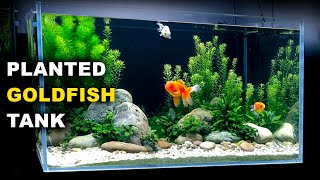 Aquascape Tutorial: PLANTED GO…
