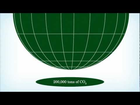 CUT! CO2: The Carbon Film Quote
