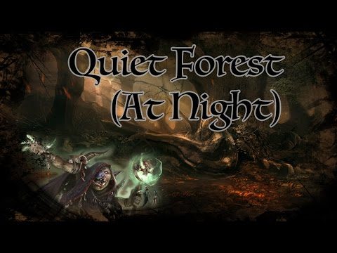 D&D Ambience - Quiet Forest at Night
