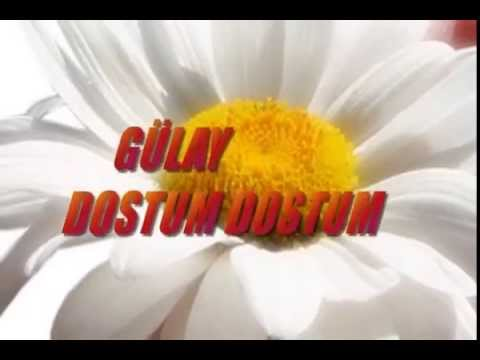 Gülay Dostum Dostum