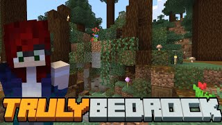 Starting the base! Truly Bedrock SMP | Season 1