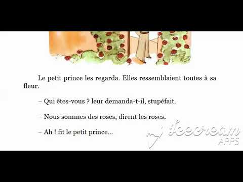Le Petit Prince Livre Audio C Xx Quebecois