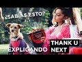 """TODO LO QUE NO VISTE EN EL VIDEO """"THANK U, NEXT"""" DE ARIANA GRANDE"""