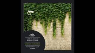 Michael & Levan and Stiven Rivic - Under Control (Petar Dundov Remix) [Kunai Records]