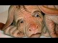 Forscher züchten Mischwesen aus Schwein & Mensch - WAS ist dran?