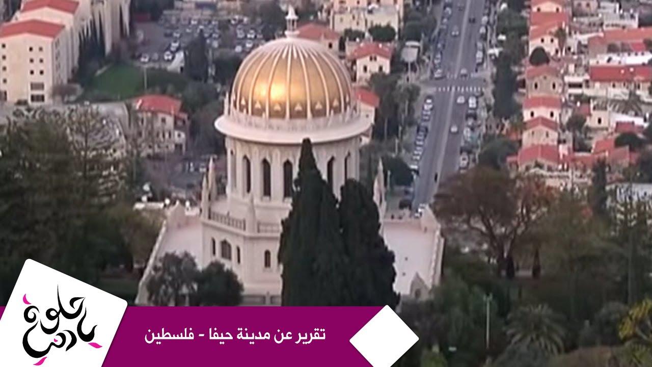 حلوة يا دنيا - تقرير عن مدينة حيفا - فلسطين