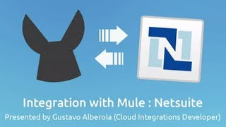 Netsuite Connector Demo | Integration with Mule