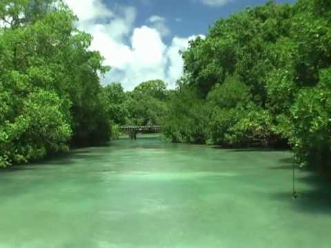 Vanuatu - Malo island