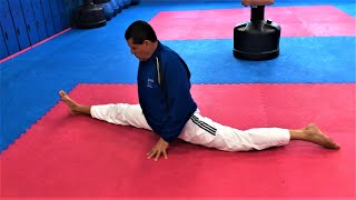 FLEXIBILITY STRETCHING for TAEKWONDO KARATE MMA w ANDRE LIMA