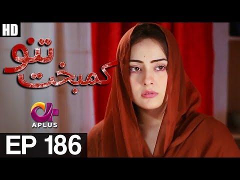 Kambakht Tanno - Episode 186 - A Plus ᴴᴰ Drama