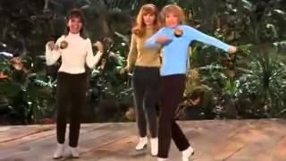 You Need Us by The Honey Bees (Gilligan