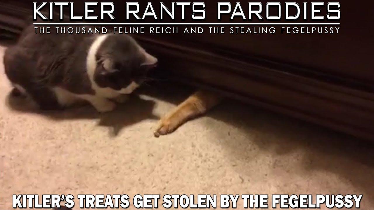 Kitler's treats get stolen by the Fegelpussy