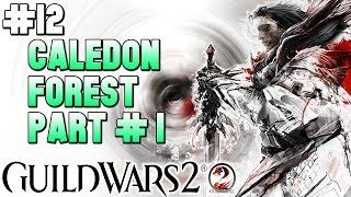 🎮Guild Wars 2 - Playthrough #12🎮 Caledon Forest: Part #1