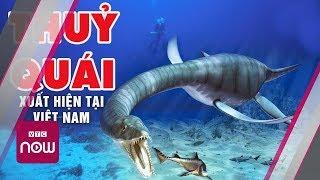 Thủy quái xuất hiện trên biển Phú Quý | Tin tức Việt Nam mới nhất