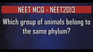 NEET MCQ Which group of animals belong to the same