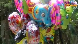 balonku ada lima   isi sendiri balon karakter gajah  love  spongebob  snail   balloons character
