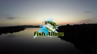 Fish Allure: The Fish Attractant of the Future!