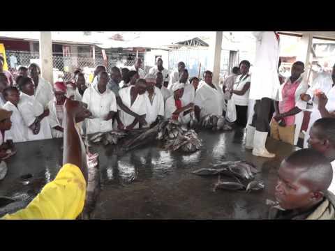 Fish auction at Ggaba landing site, Kampala, Uganda