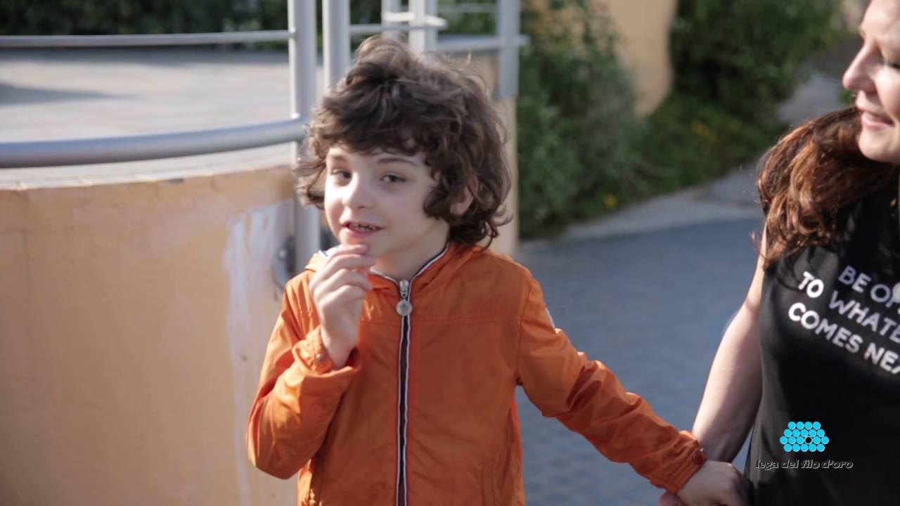 Questo è Francesco, un bimbo senza limiti