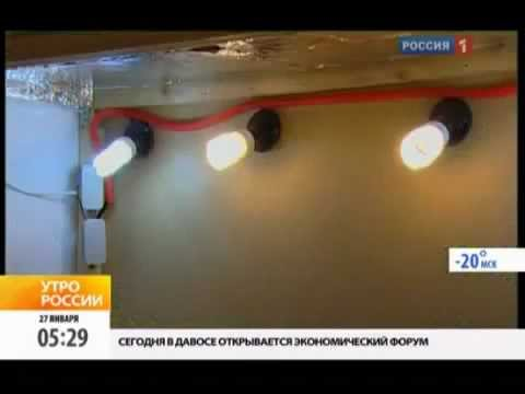 видео: Помидоры в квартире гидропоника