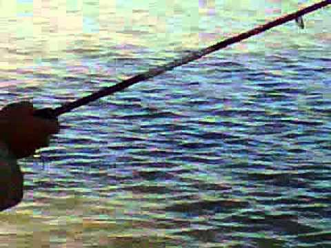 Resultado de imagen para choluteca pescadores