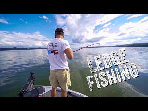 Catching GIANT BASS On HUGE Crankbaits !! ( Ledge Fishing Tricks On Lake Guntersville )