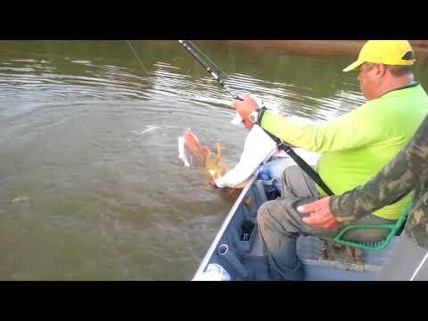 Pescaria em Luiz Alves  GO