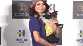 自身も犬5匹、豚1匹を飼っている動物好きの森泉さんがデザインしたドッ...