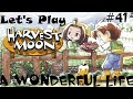 Let's Play: Harvest Moon A Wonderful Life (41)