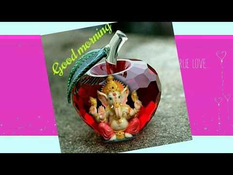 Good Morning Video, Pooja Sai Video, Whatsapp Wishes Message,