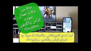 7 . سعد الريس  تساؤلات المتداولين في سوق العملات