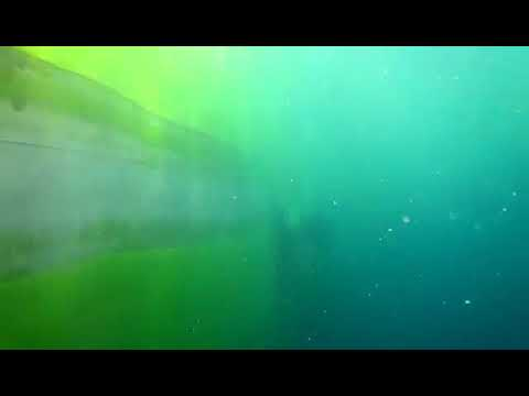 Underwater hull cleaning by: Vincent Baron