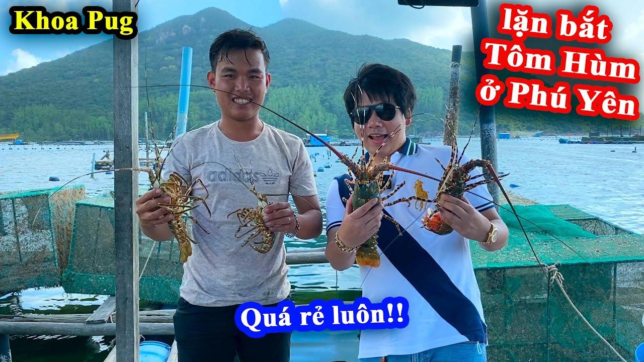 Khoa Pug Theo Chân Ngư Dân Đi Lặn Bắt Tôm Hùm + Ăn Mắt Cá Ngừ Đại Dương Khổng Lồ   Du Lịch Phú Yên