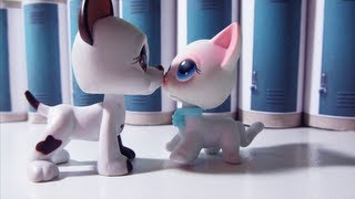 Littlest Pet Shop: Popular (Episode #16: The Fallout - Season Finale Part 1/2) [CC FRANÇAIS]