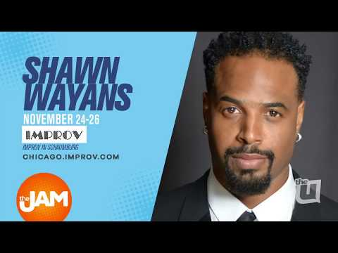 Shawn Wayans plays Which Wayans?