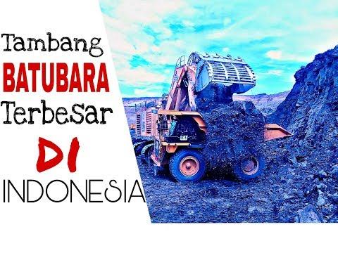 Pertambang Batubara Terbesar dan Terdalam di Kalimantan (Indonesia)