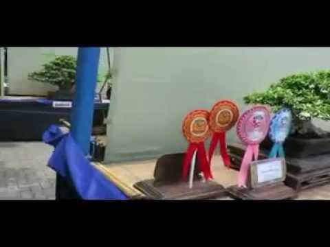 Indonesia Bonsai Exhibition 2014 vcd 2