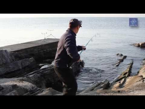 Ribolov Na Moru - Brancin Bez Tajni