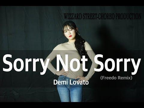 Demi Lovato - Sorry Not Sorry (Freedo...