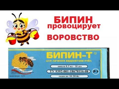 Как загубить пчёл за один день!!!  Колосальный вред от Бипина.