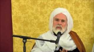 Muslims vs Vikings -  Dr. Umar F. Abd-Allah.